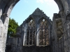 Ennis Friary (Mainistir na hInse)