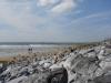 am Strand von Oranmore bei Galway