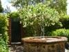 ...und Springbrunnen