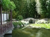 Wasser und Bambus