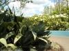 der American Modernist Garden