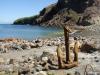 einsam steht der rostige Anker am Strand