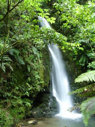 verschlungene Wege führen zum Wasserfall