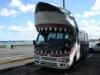 der Hai-Bus von Kelly Tarlton