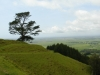 von den Papamoa Hills hat man einen guten Ausblick...