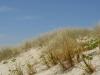 die Dünen von Papamoa Beach bieten mit ihren...