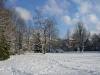 Erholungspark in Weiß