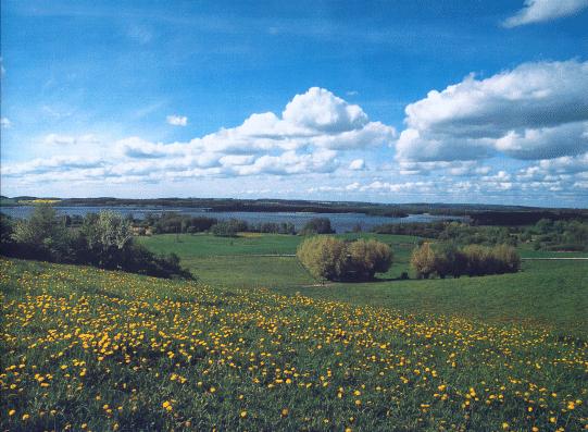 Blick von Usadel an der B 96