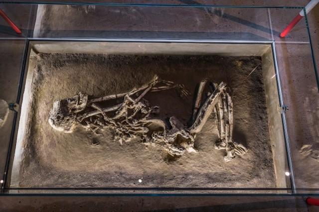 tote Bäuerin (etwa 20 Jahre alt); 5.300 bis 4.800 v. Chr.
