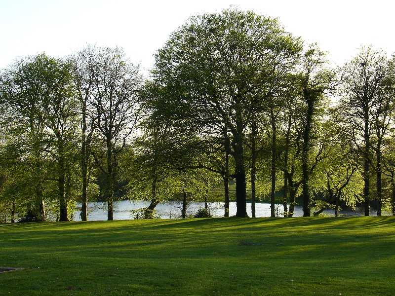 Ferienhaus direkt am Shannon River